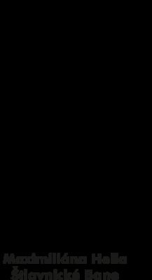 ZŠ s MŠ M. Hella logo